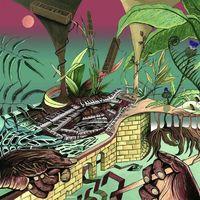 Nu Guinea - The Tony Allen Experiments - LP