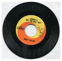 Mary Taylor - Johnny's Not The Only Boy / Please Don't Tell Them About Me - 45